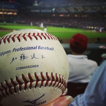 Mizuno_Official_Nippon_Professional_Baseball,_2013.jpg
