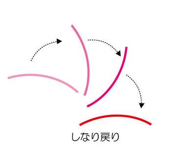 SINARI02.jpg