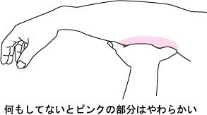08111301.jpg