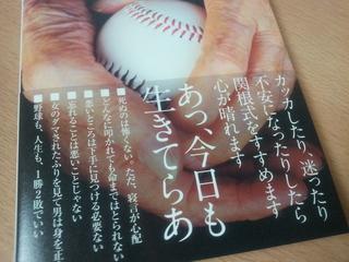 2012-11-29 15.03.15.jpg