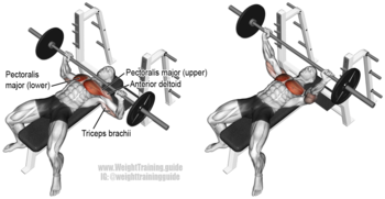 Barbell-Bench-Press.png