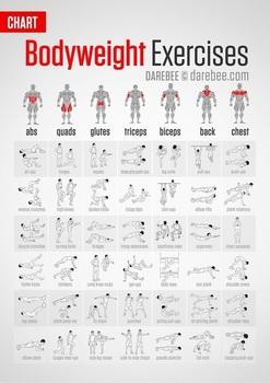 exercises.jpg