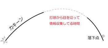 fly001.jpg