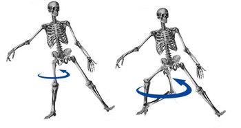 skeleton05.jpg
